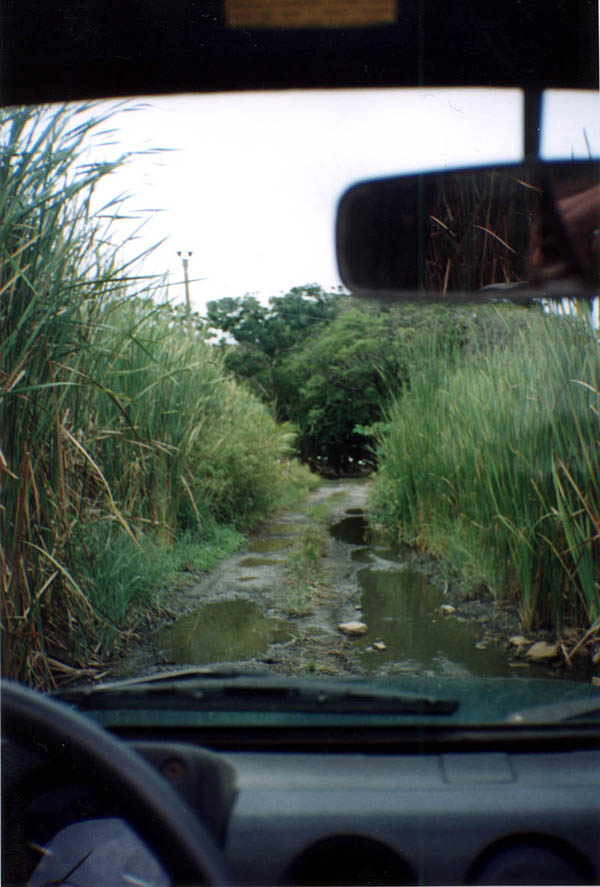 Roatan2000: Beach Road River