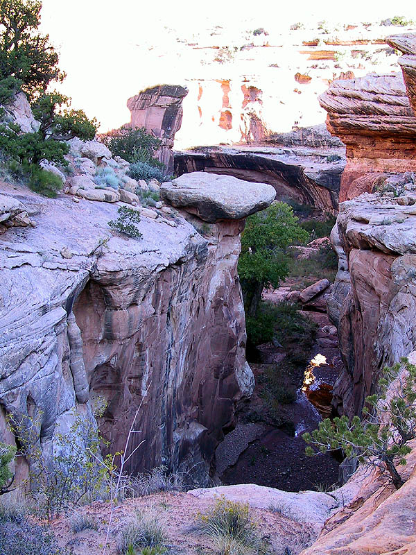 Canyoneering 2002: 55: First Rappel