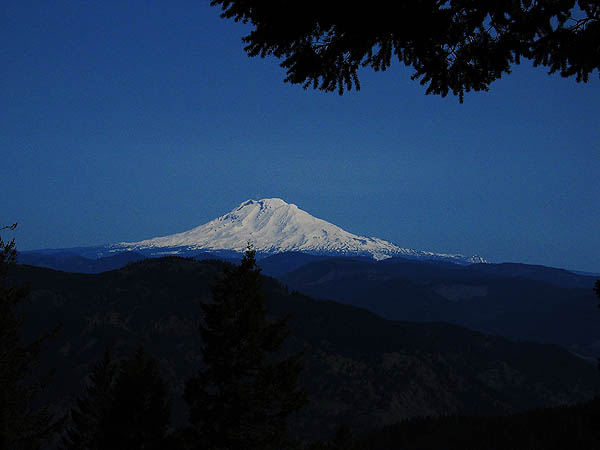 Mt Defiance 2004: Mt Adams