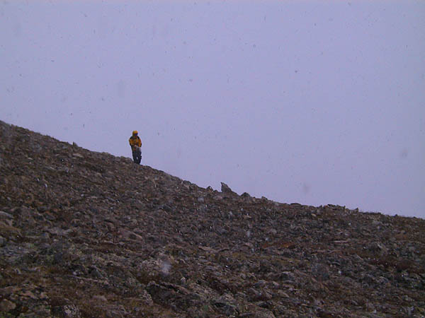 Mt Elbert 2001: Julie in the Snow