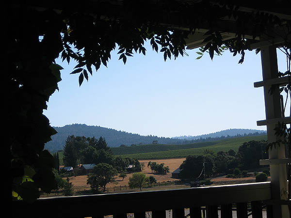 Mendocino 2006: Handley Cellars View