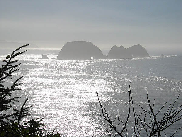 Oregon Coast 2005: Three Arch Rocks 02
